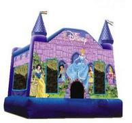 Disney Princess Castle 15x15