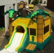 Monkey w/ Slide and BB Hoop