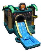 Lion Jump w/ Slide and BB Hoop with tub