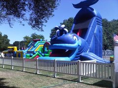 35 Ft Tall Inflatable Whale Slide