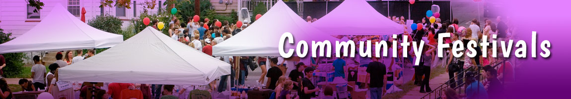 Community Festival Planning