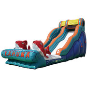 18ft Big Kahuna Dry Slide