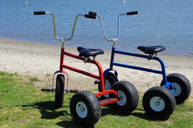 Adult Tricycle Pair
