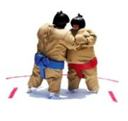 Sumo Wrestling Suits with Foam Mat