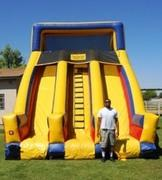 20 ft dual lane slide
