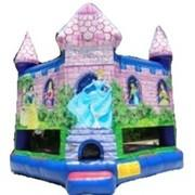 Bounce Houses/Moonwalks