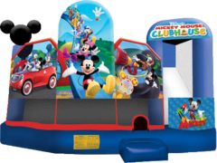 Disney Mickey Mouse Park 5n1 Combo (Dry)