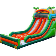 Dual lane Tropical Paradise Dry Slide