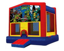 Ninja Turtle Fun House