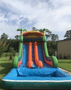 Tropical Paradise Dual Lane Water Slide