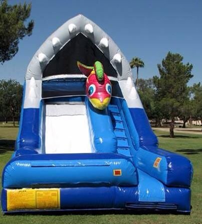 Shark Escape Water Slide