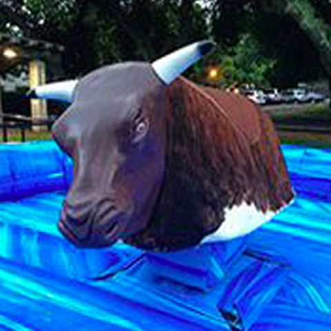 Mechanical Bull rental for Prom