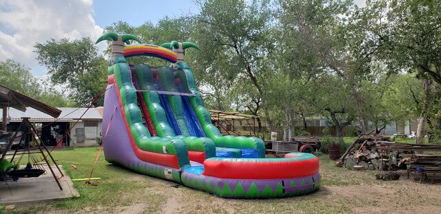 22 Purple Crush Water Slide