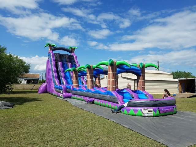 27ft Dual Lane Purple Palm Water Slide