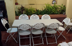 Set Rectangular Table and 8 White Chairs