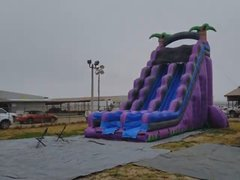27Ft Purple Palm Dry Slide