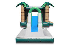 $190 Combo Bounce Houses With Water Slide