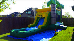 Tropical water slide with pool (#24)