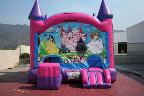 Princess Castle Combo Bouncer