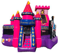 Princess Palace 3D wet