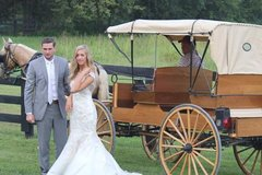 Horse and Buggy Rental