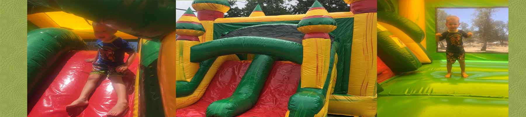 Lake County Bounce House Water Slide RentalsRentals