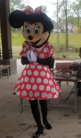 Professional Minnie Mouse
