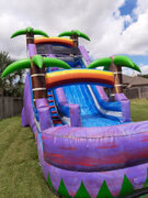16 Ft. Palm Water Slide