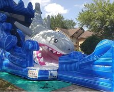 Shark Attack Water slide