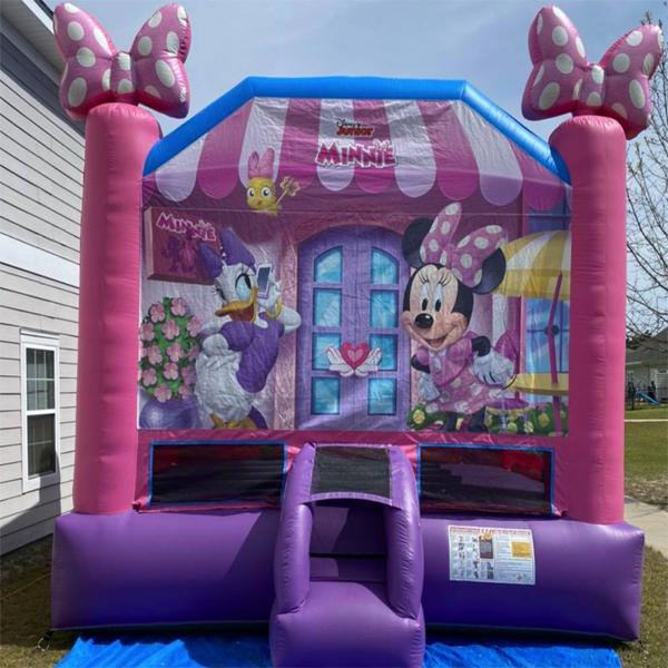 ludowici bounce house rental