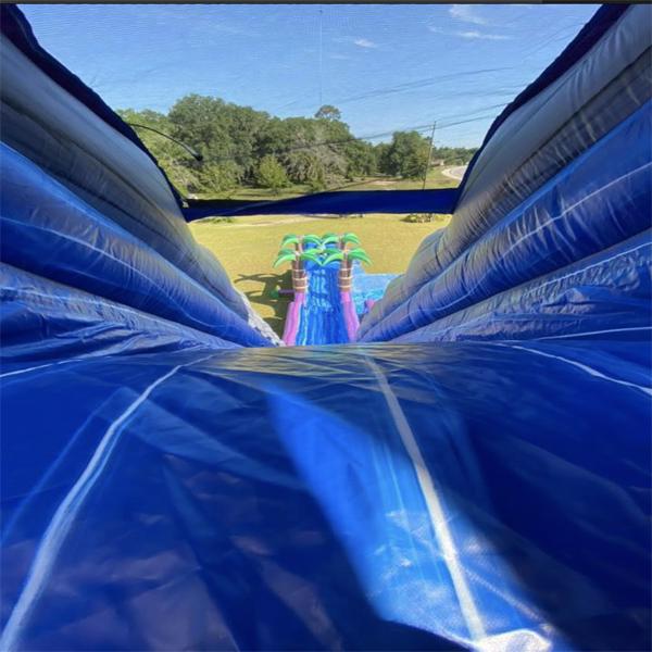 water slide rental Walthourville
