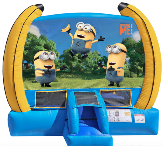 Minions Despicable me 15x15 with basketball hoop