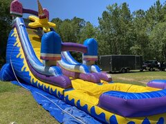 24ft Ice Cream Water Slide
