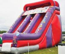 22ft Double Lane Giant Slide
