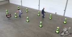 Tag The Light Crazy Cones / Interactive High Energy Game