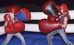 Bounce Boxing Ring with Gloves
