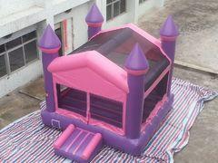 15 X 15 Pink and Purple Castle