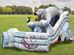 (C) 24ft Polar Bear Dry Slide