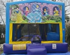 Disney Princess Wet 4 in 1 Combo