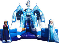 Frozen Double Dry SlideToddler