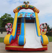 Mickey Mouse Club House Dry Slide