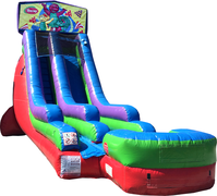 18 Ft Water Slide Barney