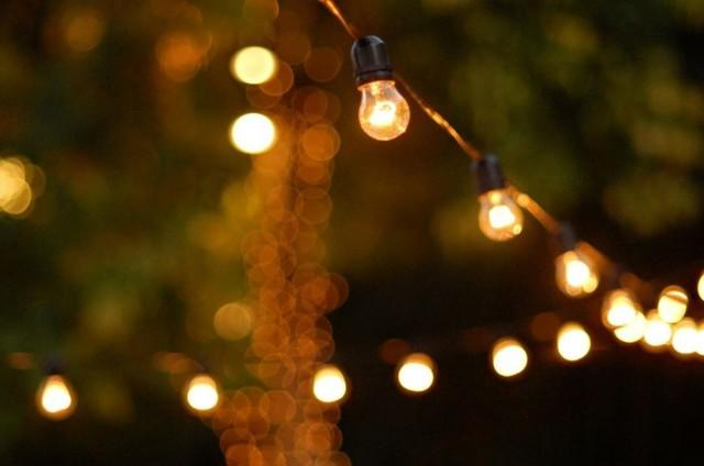 Edison Festoon Tent Lights (Per Foot)