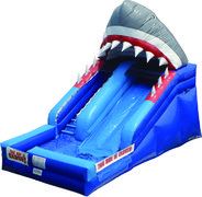 15ft Shark Slide